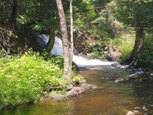 Lot for sale in Lac-Saguay, Laurentides, Chemin du Lac-Nominingue, 20288163 - Centris.ca