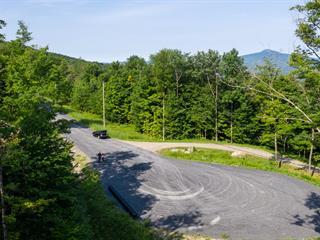 Lot for sale in Sutton, Montérégie, Chemin  Driver, 23419896 - Centris.ca
