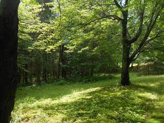 Lot for sale in Lac-des-Écorces, Laurentides, Montée  Tessier, 13217126 - Centris.ca