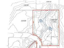 Terrain à vendre à Chelsea, Outaouais, Chemin  Susan, 18572224 - Centris.ca