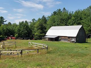 Hobby farm for sale in Papineauville, Outaouais, Rue  Papineau, 11041074 - Centris.ca