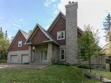 Maison à vendre à Saint-Sauveur, Laurentides, 25, Chemin du Barrage, 18715854 - Centris.ca