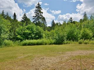 Lot for sale in Brownsburg-Chatham, Laurentides, Chemin  Dalesville, 24189513 - Centris.ca