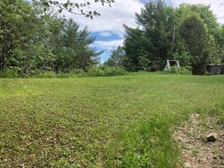 Terrain à vendre à Chénéville, Outaouais, Chemin  Tour-du-Lac, 19801880 - Centris.ca