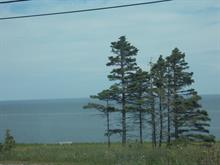 Terrain à vendre à Gaspé, Gaspésie/Îles-de-la-Madeleine, boulevard de Cap-des-Rosiers, 27855296 - Centris.ca
