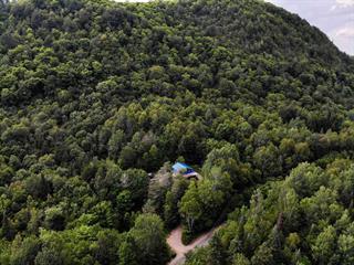 Maison à vendre à Huberdeau, Laurentides, 331, Chemin du Lac-à-la-Loutre, 20782511 - Centris.ca
