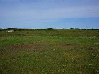 Land for sale in Les Îles-de-la-Madeleine, Gaspésie/Îles-de-la-Madeleine, Chemin  Dune du Sud, 24246139 - Centris.ca