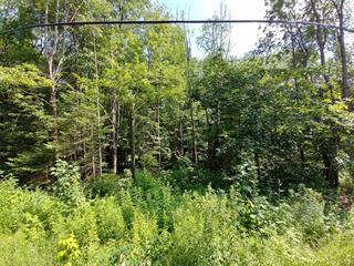Lot for sale in Gore, Laurentides, Chemin  Tamarac, 24934257 - Centris.ca