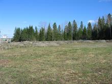 Terrain à vendre à Témiscouata-sur-le-Lac, Bas-Saint-Laurent, Chemin du Golf, 17908641 - Centris.ca