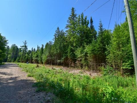 Lot for sale in Mulgrave-et-Derry, Outaouais, Chemin  Julia, 10713208 - Centris.ca