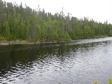 Lot for sale in Saint-Ambroise, Saguenay/Lac-Saint-Jean, 1er ch. du Lac-Ambroise, 24609407 - Centris.ca