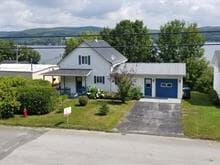 Maison à vendre à Saint-Ferdinand, Centre-du-Québec, 1043, Rue  Labbé, 14931184 - Centris.ca