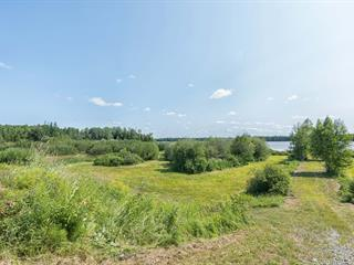 House for sale in Barraute, Abitibi-Témiscamingue, 235, Chemin du Lac-Fiedmont, 17908307 - Centris.ca