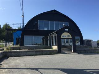 Commercial building for sale in Val-d'Or, Abitibi-Témiscamingue, 1601, 3e Avenue, 25246711 - Centris.ca