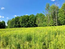 Lot for sale in Low, Outaouais, 14, Chemin  Anthony, 23248711 - Centris.ca