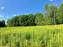 Terrain à vendre à Low, Outaouais, 14, Chemin  Anthony, 23248711 - Centris.ca