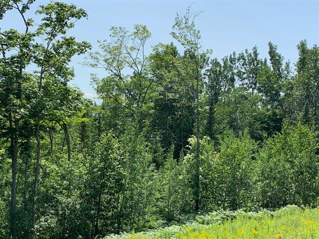 Lot for sale in Les Éboulements, Capitale-Nationale, 325, Chemin  Pierre-De-Sales, 12831837 - Centris.ca