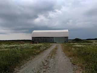 Hobby farm for sale in Rochebaucourt, Abitibi-Témiscamingue, 196, Route  397, 27517919 - Centris.ca