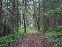 Land for sale in La Malbaie, Capitale-Nationale, 1, Rang du Ruisseau-des-Frênes, 16705325 - Centris.ca