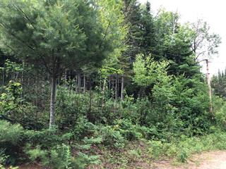 Lot for sale in Harrington, Laurentides, Chemin du Loup, 26203864 - Centris.ca