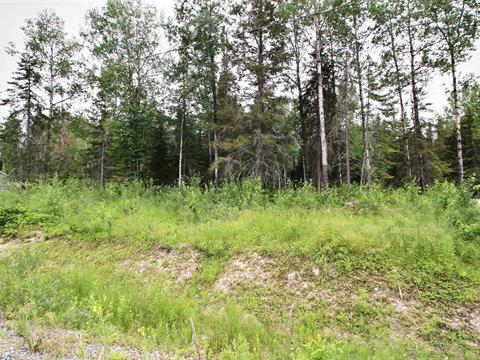 Terrain à vendre à Val-d'Or, Abitibi-Témiscamingue, Chemin des Grands-Ducs, 23938627 - Centris