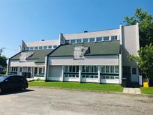Triplex à vendre à Les Chutes-de-la-Chaudière-Ouest (Lévis), Chaudière-Appalaches, 12, Rue de Saint-Étienne-de-Lauzon, 16105523 - Centris.ca