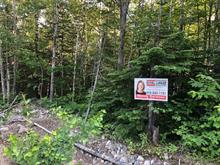 Terrain à vendre à Petite-Rivière-Saint-François, Capitale-Nationale, Chemin  Alfred-Pellan, 13990904 - Centris.ca