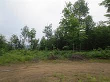 Terrain à vendre à Mandeville, Lanaudière, Ancien ch. du Lac-Sainte-Rose, 19587050 - Centris.ca