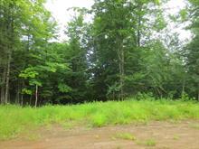 Terrain à vendre à Mandeville, Lanaudière, Ancien ch. du Lac-Sainte-Rose, 20294853 - Centris.ca