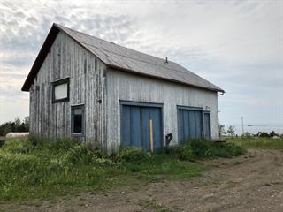 Hobby farm for sale in Sainte-Anne-des-Monts, Gaspésie/Îles-de-la-Madeleine, 832, Rue  Bellerive, 20216943 - Centris.ca
