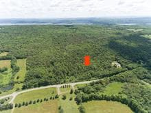Lot for sale in Austin, Estrie, Chemin  Millington, 19440155 - Centris.ca