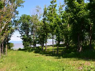 Terrain à vendre à Saint-Roch-des-Aulnaies, Chaudière-Appalaches, Route de la Seigneurie, 25005753 - Centris.ca