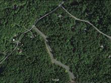 Terrain à vendre à Sainte-Anne-des-Lacs, Laurentides, Chemin des Rossignols, 12822134 - Centris.ca