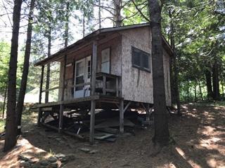 Cottage for sale in Bowman, Outaouais, 46, Chemin de la Lièvre Nord, 26595021 - Centris.ca