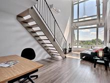 Condo / Appartement à louer à Rosemont/La Petite-Patrie (Montréal), Montréal (Île), 6570, Rue  Saint-Hubert, app. 501, 15734766 - Centris