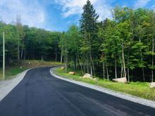 Lot for sale in Sainte-Adèle, Laurentides, Rue du Gai-Luron, 15594411 - Centris.ca