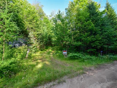 Lot for sale in Boileau, Outaouais, Chemin des Pionniers, 11773037 - Centris.ca