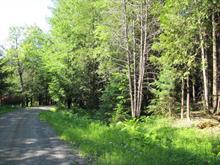 Terrain à vendre à Ogden, Estrie, Chemin  Descente 2, 19463738 - Centris.ca