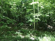 Land for sale in Wentworth-Nord, Laurentides, Chemin  Lebeau, 27764886 - Centris.ca