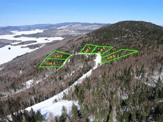 Terrain à vendre à Saint-Donat (Lanaudière), Lanaudière, Chemin du Mont-Jasper, 23063803 - Centris.ca