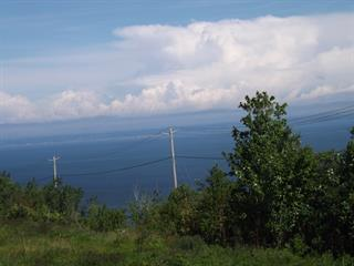 Lot for sale in La Malbaie, Capitale-Nationale, boulevard  Malcolm-Fraser, 22575514 - Centris.ca