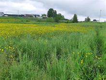 Terre à vendre à Saint-Victor, Chaudière-Appalaches, 3e Rang Nord, 11478124 - Centris.ca