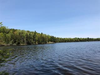 Land for sale in Gracefield, Outaouais, Chemin des Pruches, 11500414 - Centris.ca