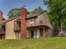 Duplex à vendre à Sainte-Adèle, Laurentides, 1923Y - 1923Z, Rue du Skieur, 25456507 - Centris.ca