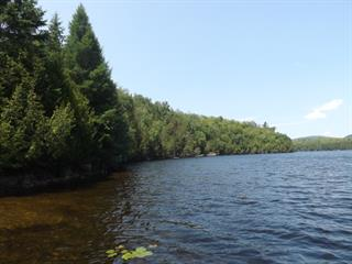 Lot for sale in Wentworth-Nord, Laurentides, Chemin  Lundon, 15349596 - Centris.ca