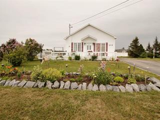 House for sale in Rivière-au-Tonnerre, Côte-Nord, 555, Rue  Jacques-Cartier, 19738064 - Centris.ca