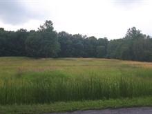 Terrain à vendre à Roxton Pond, Montérégie, Avenue du Lac Est, 24991220 - Centris.ca
