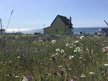 House for sale in Les Îles-de-la-Madeleine, Gaspésie/Îles-de-la-Madeleine, 505, Chemin du Bassin, 15094384 - Centris.ca