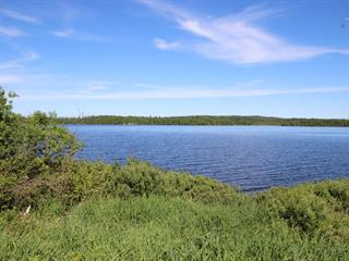 Lot for sale in Senneterre - Paroisse, Abitibi-Témiscamingue, Rue  Meilleur, 11660058 - Centris.ca