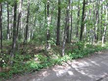 Lot for sale in Pontiac, Outaouais, 22, Chemin des Mésanges, 20361071 - Centris.ca